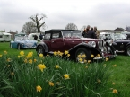Pilgrim Cars - FT. Pilgrim FT among the daffs