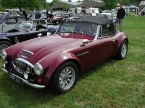 Sebring International - TMX. Austin Healy on steroids