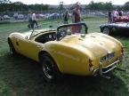 Pilgrim Cars - Sumo. Yellow sumo rear
