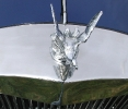 Close up of hood ornament
