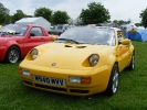 Yellow Rossa at Stoneleigh