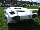 Rear shot of Countach replica